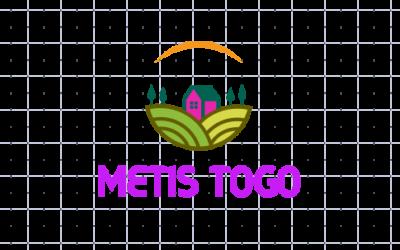 METIS LOGO.png